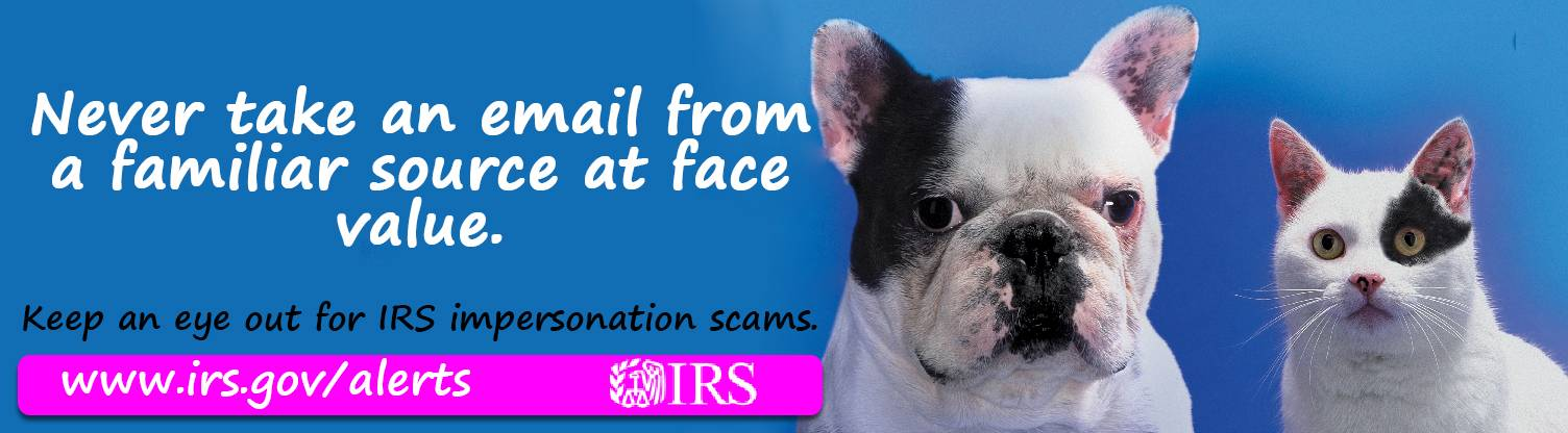 Scam ImposterDogCat advertiser digital